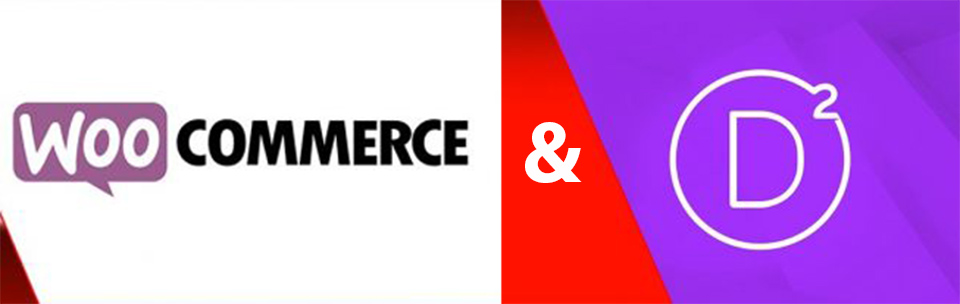 Divi & Woocommerce באתרים בעברית